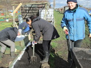 Green Gym in Haringey at East Hale Allotments