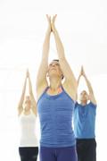 Vinyasa Flow Yoga N15