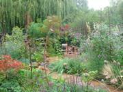 National Garden Scheme open garden