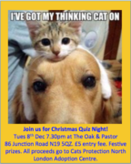 Christmas Quiz Night for Cats Protection