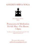 Pranayama & Meditation