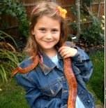 Port-a- Zoo: Amazing Animal Experiences @ Stroud Green and Harringay Library