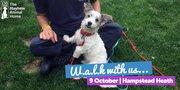Dog Walk for The Mayhew - Hampstead Heath
