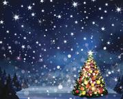 Tottenham Green Christmas Tree Light Switch on!