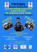 haringey boxing club summer scheme (until Aug 31st)