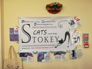 Stoke Newington Vegan Market - fundraiser for Stokey Cats