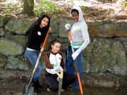 Franklin Park Spring Clean-Up