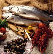 Community Supported Fishery Initiative, Wicked-Fresh Seafood!
