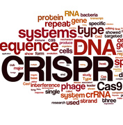 [Upcoming Webinar] What is CRISPR/Cas9?