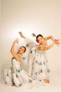 NAI-NI CHEN DANCE COMPANY: Year of the Rooster at NJPAC