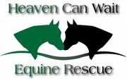 HCW Tack Sale & Fundraiser in Cameron, ON