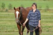 Women, Horses & Fear Workshop