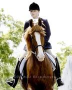 Southeast Iowa English Riding Association Charity Horse Show