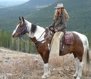 Ride the Rocky Mountains with the Wildhorse Ranch Crew
