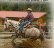 Jonathan Field Horsemanship - Course 1 Leadership Oct 1-3, 2010