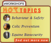 Equine Guelph eWorkshop- Behaviour & Safety