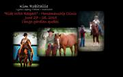 """""""Ride with Rspect"""" Horsemanship Clinic"""