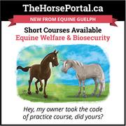 Equine Welfare - Canada's Code