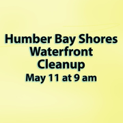 Waterfront Cleanup 2019