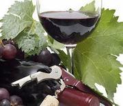 Enología, viticultura y cata de vinos