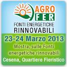 AgroFer 2013