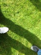 small stepes