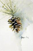 pine cone--Dec 2009