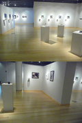 Object of Mourning Exhibtion View