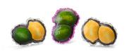 Lime/Lemon, Lime/Lime, Lemon/Lemon