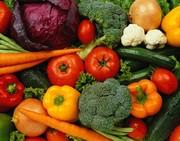 Creating Gardens and Food Growing Workshop
