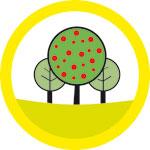 Grafting on fruit trees, Mount Eden Village