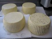 Hard Cheese Class & Whey Ricotta