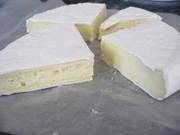 Camembert Workshop