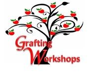 Grafting Workshops