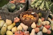 Heritage Harvest Festival