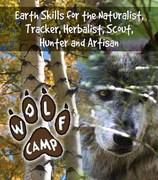 Wolf Journey Class