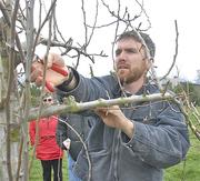 Western Washington Fruit Research Foundation Winter Field Day