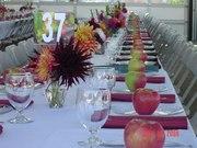Annual Whatcom Harvest Dinner