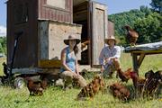 Greenhorns: Meet the new generation farmer