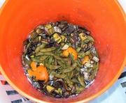 Composting, Even on Your Balcony