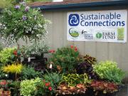 Cascade Cuts Plant Sale Extravaganza