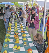 Fall Fruit Festival at Cloud Mountain Farm Center