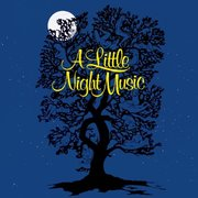 A Little Night Music: Annual Music Program Fundraising Event