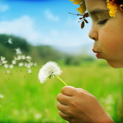Reverse Flower Communion
