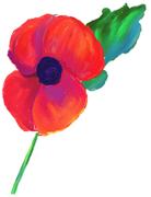 Broomfield Remembrance Service, 11th November