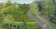 Planting Bury Lodge Wetlands