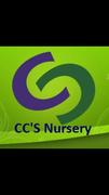 CC's Nursery