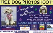 Free Doggy Photoshoot!
