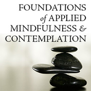 Foundations of Applied Mindfulness and Contemplation Webinar