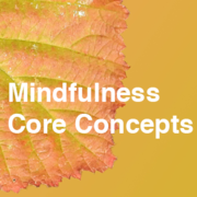1-Day Mindfulness Core Concepts